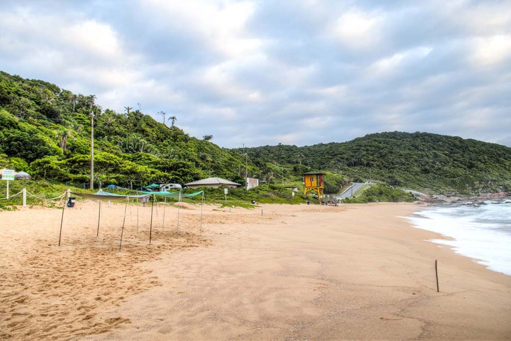 Praia do Pinho nude beach and naturist camping near Florianopolis, Brazil