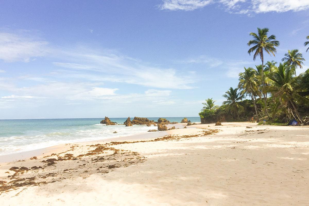 Praia Tambaba nude beach in Brazil
