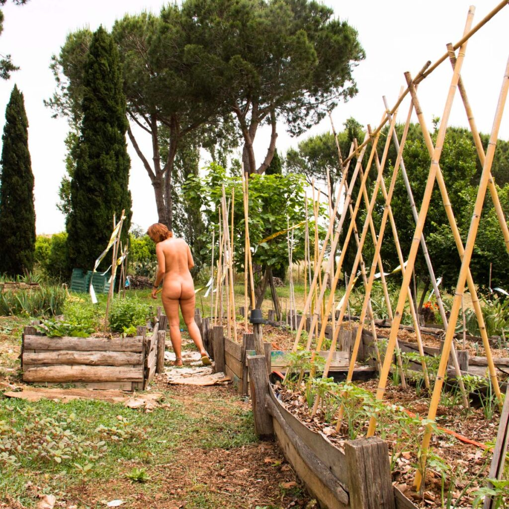 How to get a Naturist Volunteer Job